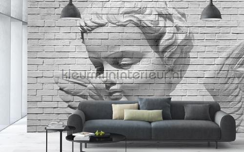 Angel brick wall fotobehang 00160 aanbieding fotobehang Ideal Decor