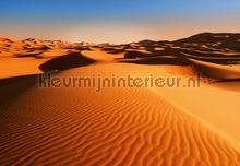 Desert landscape fotobehang Ideal Decor Zon Zee Strand