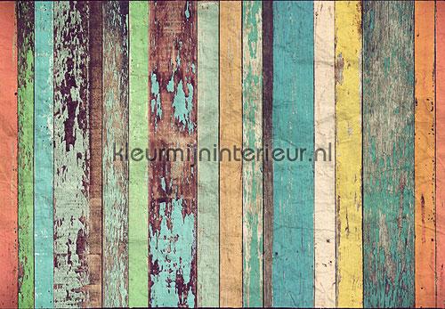 Coloured wooden wall fotobehang 00966 aanbieding fotobehang Ideal Decor