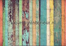 Coloured wooden wall fototapeten Ideal Decor Ideal-Decor Vlies 00966