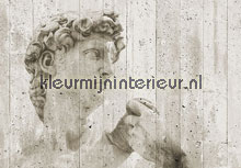 David street art fotobehang Ideal Decor Ideal-Decor Vlies 00970