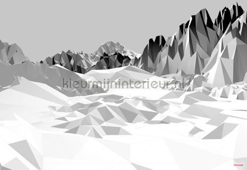 icefields fotobehang 8-208 Imagine Edition 3 Stories Komar