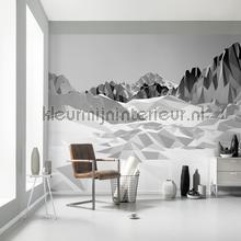 icefields papier murales Komar Imagine Edition 3 Stories 8-208