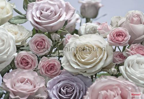 floraison photomural 8-736 Imagine Edition 3 Stories Komar