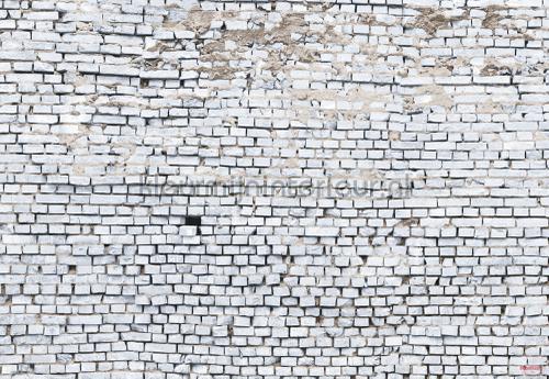white brick photomural 8-881 Imagine Edition 3 Stories Komar
