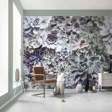 shades papier murales Komar Imagine Edition 3 Stories 8-962