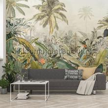 amazonia papier murales Komar Imagine Edition 3 Stories xxl4-063