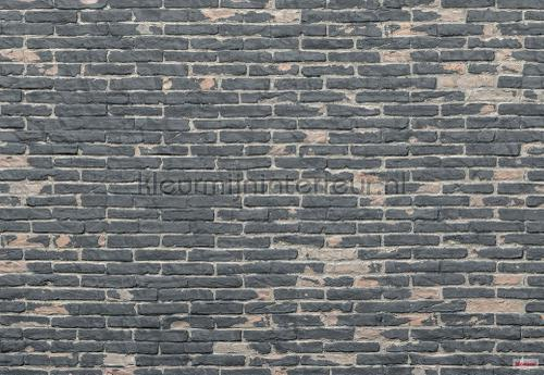 painted bricks fotobehang xxl4-067 Imagine Edition 3 Stories Komar