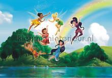 Fairies and a rainbow fotobehang AG Design Kidz wall collection FTDN-XXL-5009