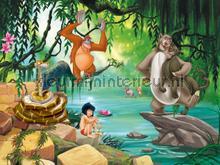 Jungle book fotobehang AG Design Kidz wall collection FTDN-XXL-5045