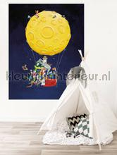 hot air balloon photomural Kek Amsterdam Kinderbehang pa-026