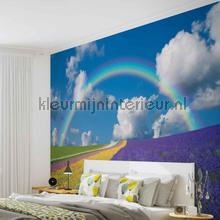 Rainbow photomural Kleurmijninterieur all images