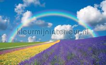 Rainbow fotobehang Kleurmijninterieur kinderkamer meisjes