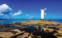 Blue sky with mill photomural Kleurmijninterieur all images
