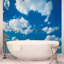 Cloudy sky photomural Kleurmijninterieur Mural room set photo's