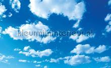 Cloudy sky fotobehang Kleurmijninterieur Kunst---Ambiance