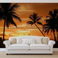 Sunset palms photomural Kleurmijninterieur Mural room set photo's