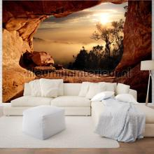 Foggy forest photomural Kleurmijninterieur Mural room set photo's