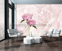 Pink peony fotobehang Kleurmijninterieur Bloemen Planten
