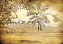 Beach in sepia fotobehang Kleurmijninterieur Zon Zee Strand