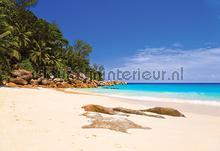 Peaceful beach fotobehang Kleurmijninterieur Zon Zee Strand