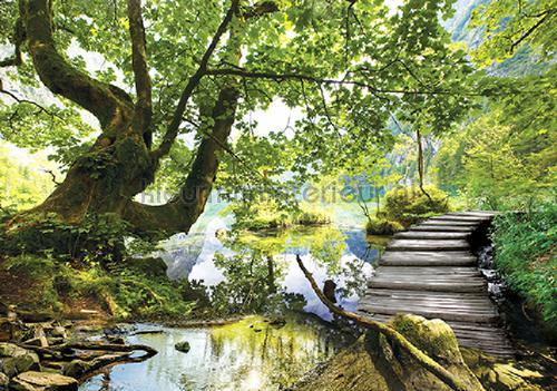 Kleur Mijn Interieur : Path over the water fotobehang landscape kleurmijninterieur