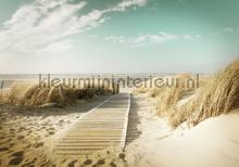 Beach path soft colors fotobehang Kleurmijninterieur Zon Zee Strand