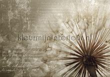 Dandelion poem fotomurali Kleurmijninterieur PiP studio wallpaper
