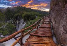 Walking above Falls fototapet Kleurmijninterieur verdenskort