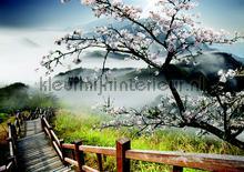White blossom landscape papier murales Kleurmijninterieur structures