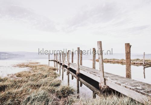 Wooden walkingbridge fototapeten 12047ve-l Landscape Kleurmijninterieur