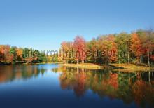 Autumn forest seen from water photomural Kleurmijninterieur all-images