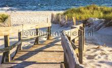 Enter the beach fototapeten Kleurmijninterieur alle-bilder