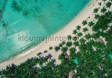 Beach from top view photomural Kleurmijninterieur all-images