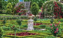 Park garden fotobehang Kleurmijninterieur alle afbeeldingen