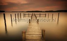 Foggy lake fotobehang Kleurmijninterieur Zon Zee Strand
