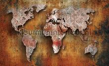 Worldmap photomural Kleurmijninterieur world maps