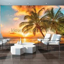 Dusk beach fototapeten Kleurmijninterieur alle-bilder