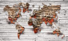 Smokey worldmap photomural Kleurmijninterieur world maps