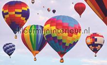Balloons papier murales Kleurmijninterieur PiP studio wallpaper