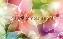 Bunte lilien papier murales Kleurmijninterieur PiP studio wallpaper