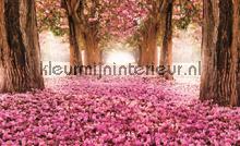 Pink alley papier murales Kleurmijninterieur PiP studio wallpaper