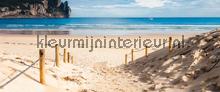 Sands beachs fototapeten Kleurmijninterieur alle-bilder