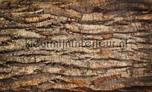 Wood grains papier murales Kleurmijninterieur PiP studio wallpaper