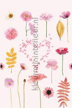 Flowers in pink background fotobehang Onszelf Little Wallpaper OZP-3772