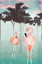 Flamingo and palms fotobehang Onszelf Little Wallpaper OZP-3781