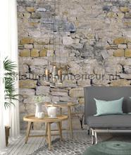 Ruwe stenen muur fototapeten Behang Expresse weltkarten