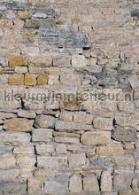 Ruwe stenen muur papier murales Behang Expresse PiP studio wallpaper