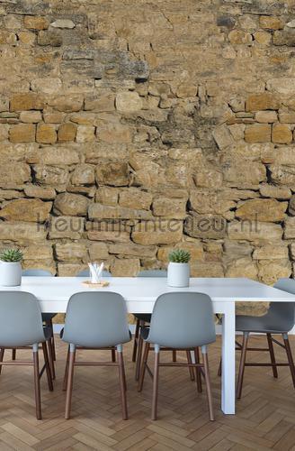 Warme ruwe stenen muur papier murales ak1002 Moderne - Résumé Behang Expresse