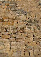 Warme ruwe stenen muur papier murales Behang Expresse PiP studio wallpaper